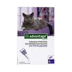 Advantage 80 chat 4 x 0.8 ml